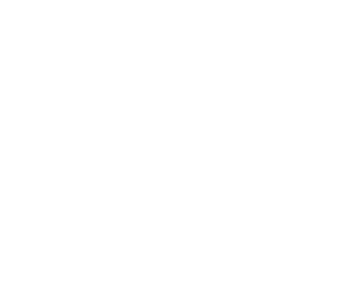 Time Equities Inc.